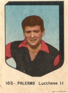 V.A.V. 1954-1955 Lucchese