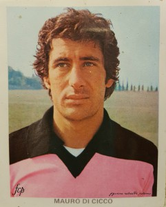 Di Cicco 1979-1980